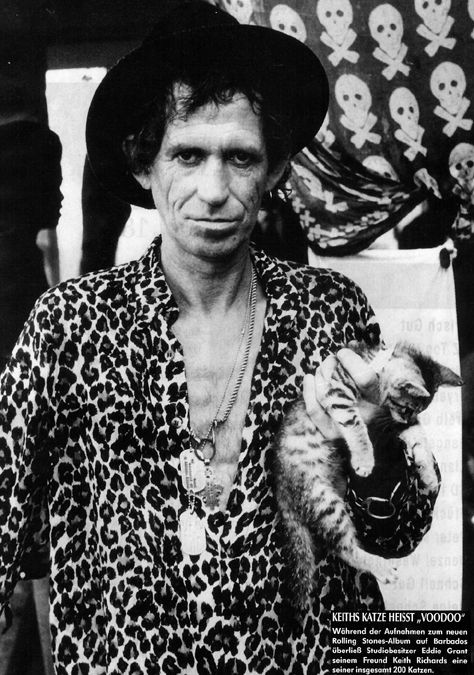 Keith Richards Cat