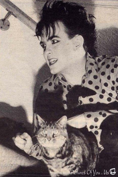 Robert Smith Cat
