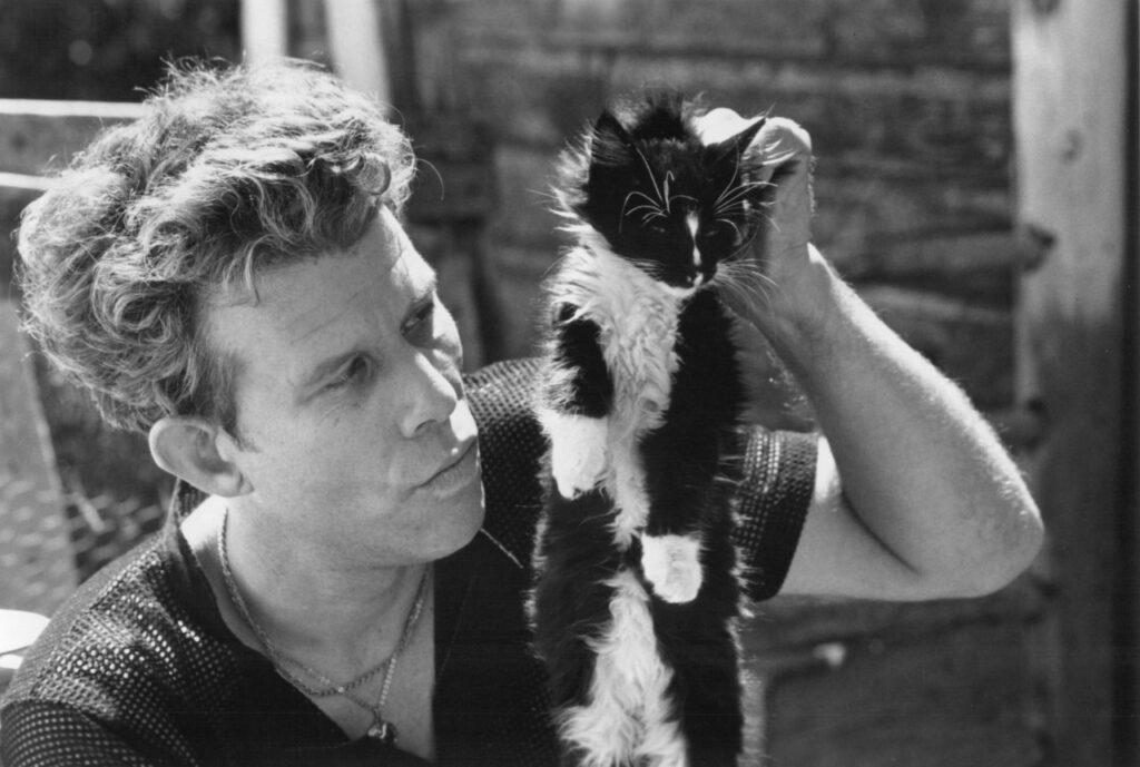 tom waits cat