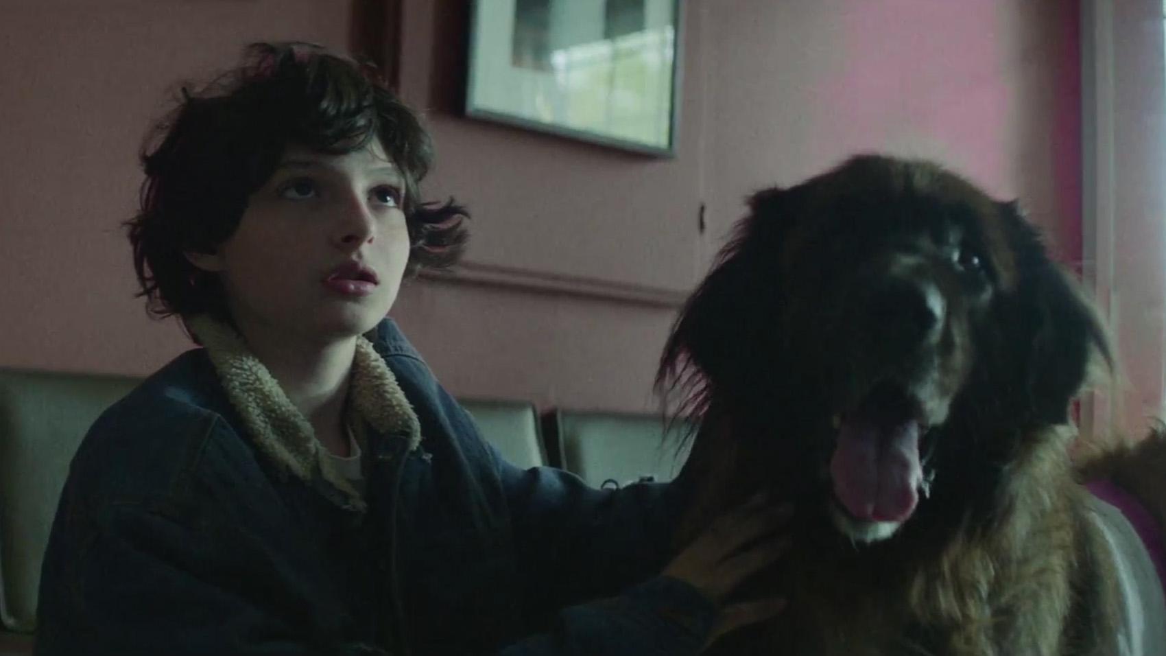 pup-music-video